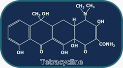 Figure 1. Tetracycline